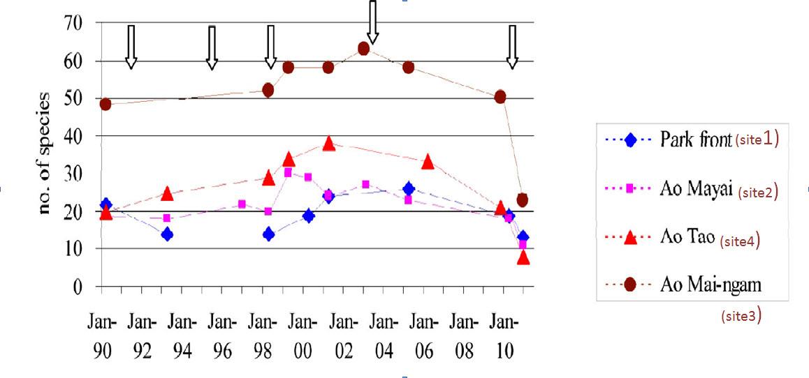 กราฟแสดงความหลากหลายของชนิดปะการังมีการเปลี่ยนแปลง